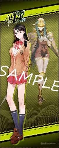 Tsubasa and Caeda 2