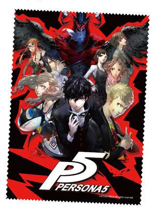 P5 Cleaning Cloth