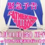 Catherine: Full Body Special Announcement Scheduled for January 11, 2019